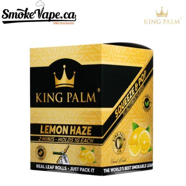 king-palm-lemon-haze1
